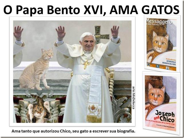 papa_ama_gatos (29)