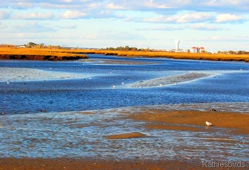 10. Salisbury beach-kab