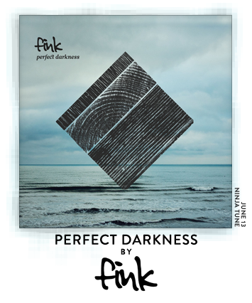 Perfect Darkness by Fink