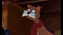 05 Rufus
