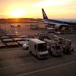 ANA airlines in tokyo in Narita, Tokyo, Japan