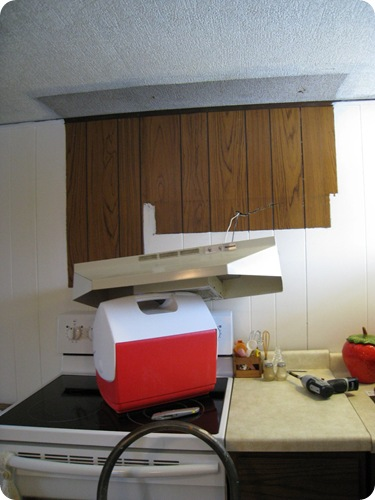 kitchen_cabinets_removed_athomewithh