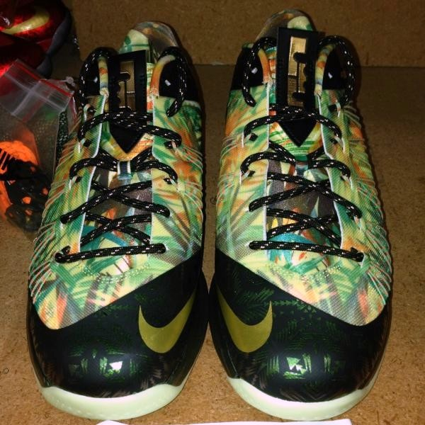 Nike Lebron 10 Low 2 Time Champion