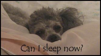 Navi Sleep Time