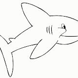 Tiburon-Feliz.jpg