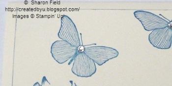 3.butterfliesandblingtimesthree