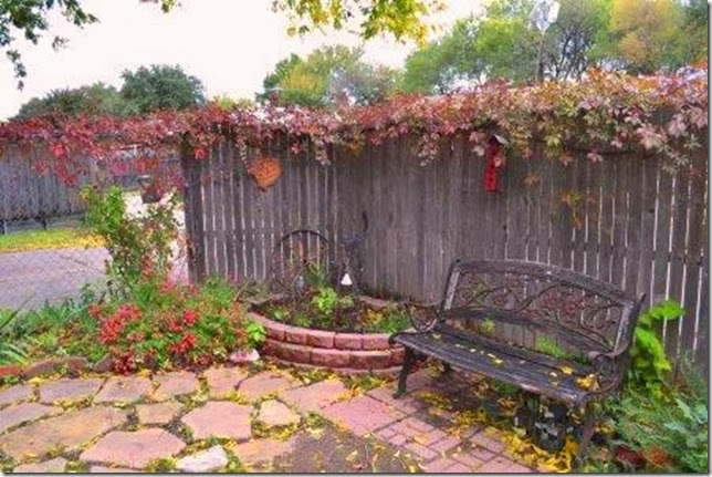 suburban garden fall color, Virginia Creeper, Sage