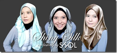 Shiny Silk01 - Cover Picture