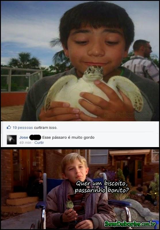 QUE PÁSSARO GORDO!