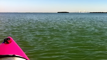 kayaking in Tampa Bay