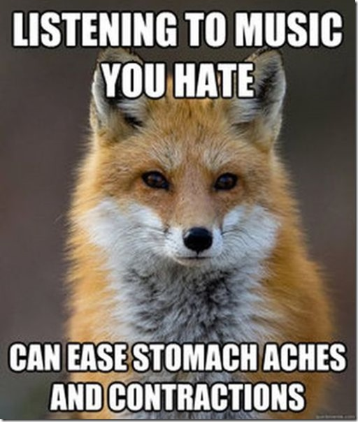 fox-facts-meme-40