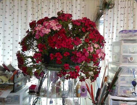 pixies petals part 2downsized_0226001257