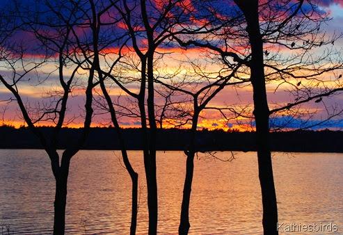 12. sunset thru the trees-kab