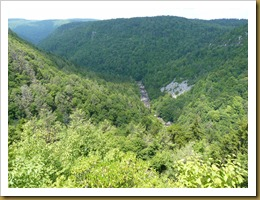 Blackwater Falls S.P WV-View from the Lodge