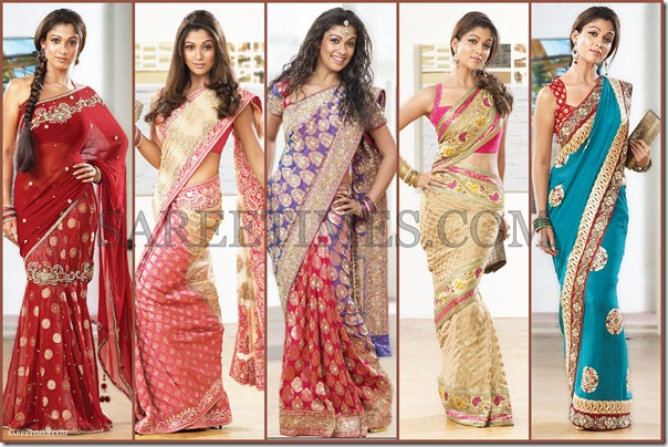 Nayanathara_Pothys_Saree_Designs