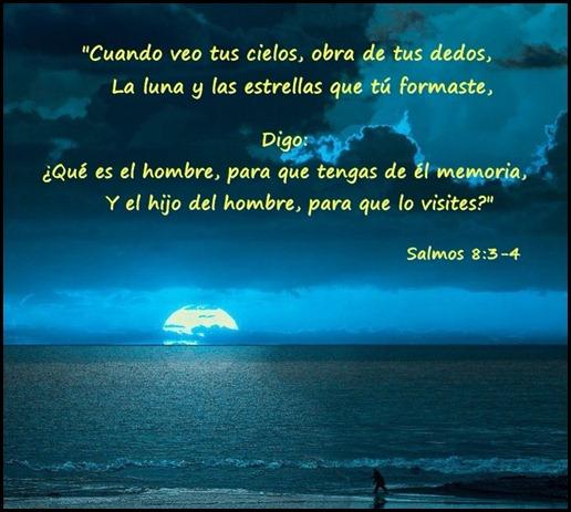 SALMOSLLORO04
