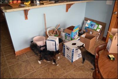 kitchen during 08