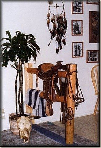 saddle1[1]