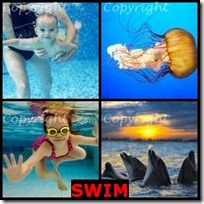 SWIM- 4 Pics 1 Word Answers 3 Letters