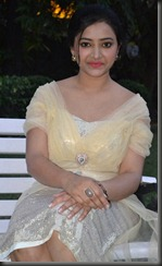 Swetha Basu Prasad at Chandamama Movie Audio Launch Photos