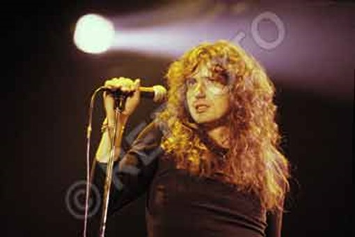 whitesnake-reading-79