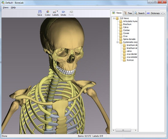 Free Interactive 3D Human Anatomy Software - Instant Fundas