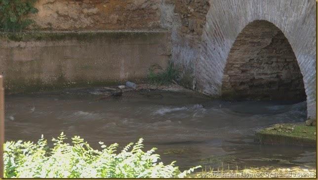El agua, que proviene del río Fes, aparece bajo las murallas