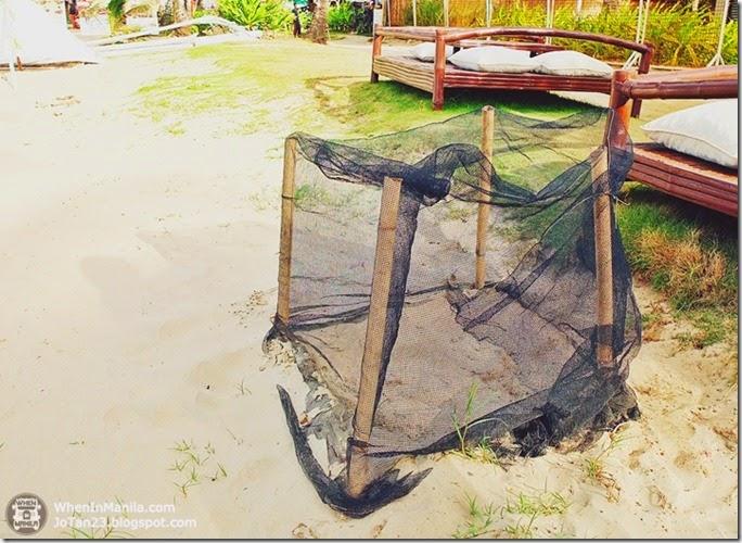 sheridan-beach-resort-sabang-beach-puerto-princesa-palawan (12)