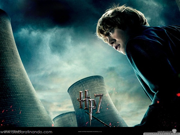 harry-potter-and-the-deathly-hallows-wallpapers-desbaratinando-reliqueas-da-morte (29)