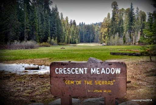 Crescent Meadow