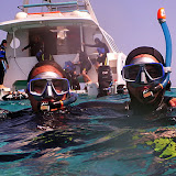 Snorkeling With Aquanature - Noumea, New Caledonia