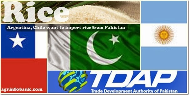 Argentina, Chile want to import rice from Pakistan