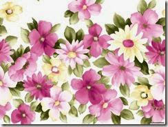 flores-flowers-flor-fleurs-476