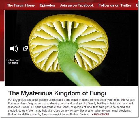 bbc mushroom