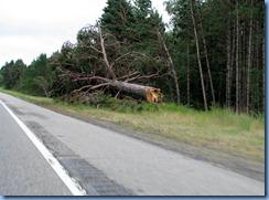 2652 Minnesota Hwy 2 East - storm damage