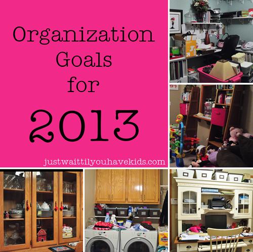 Organization Goals 2013