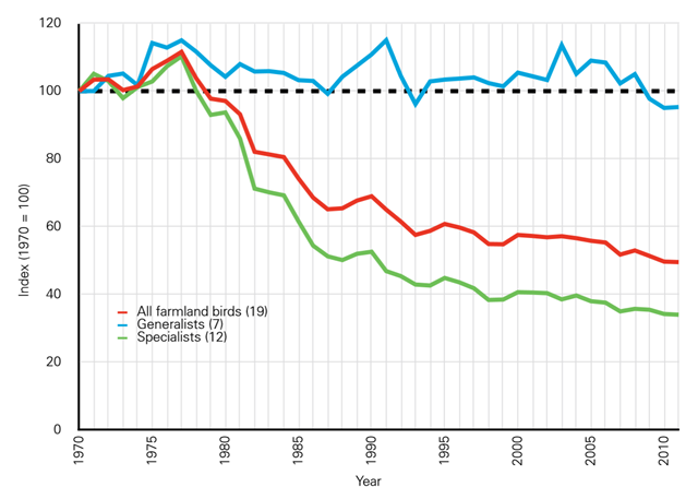 The UK Farmland Bird Indicator, 1970-2011, showing differing trends for specialist and generalist species. Data are from the RSPB, BTO, JNCC, and Defra. The numbers in brackets refer to the number of species in each group. Specialist species have decline by over 60% in 40 years. Graphic: RSPB