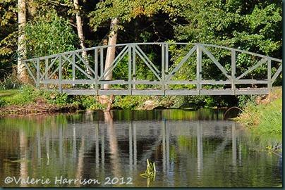 29-bridge