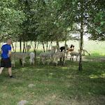 2013_07_13_Dolina_Kocinaki_10.JPG