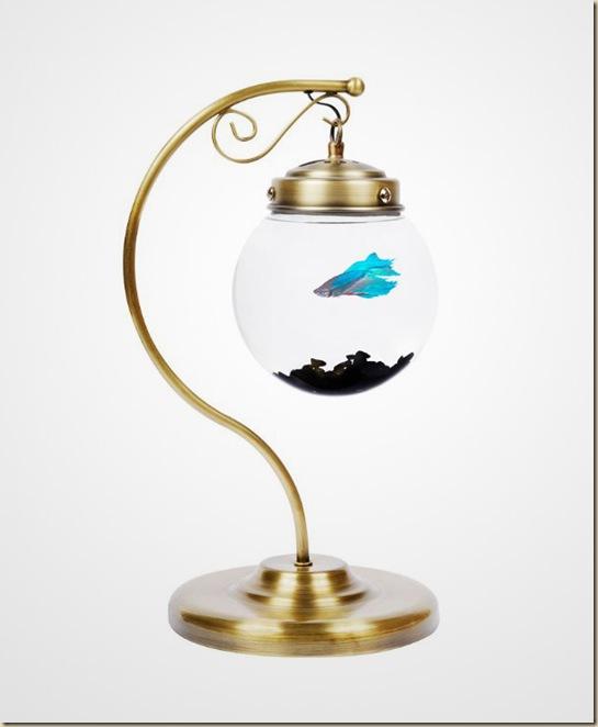 Aquariums créatifs et insolites-026