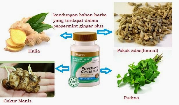 buang angin dengan peppermint-ginger plus