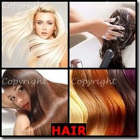 HAIR- 4 Pics 1 Word Answers 3 Letters
