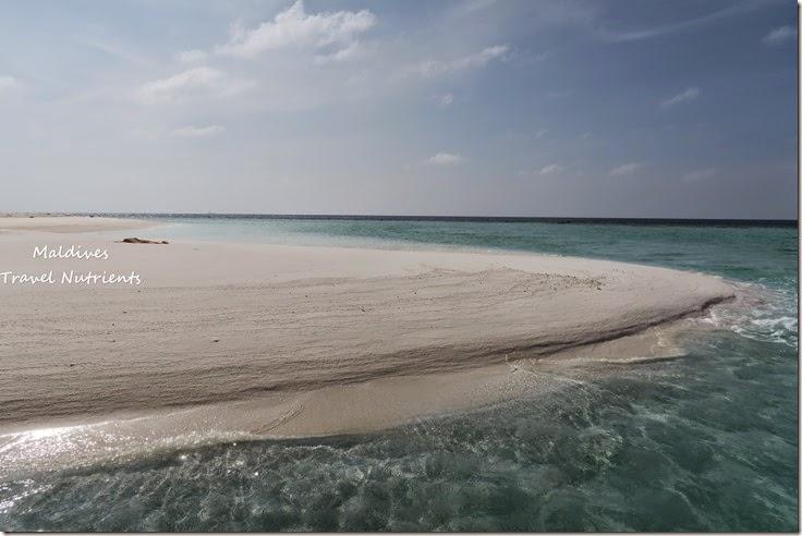 馬爾地夫 野餐島 浮潛 (32)