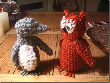Owl_0012