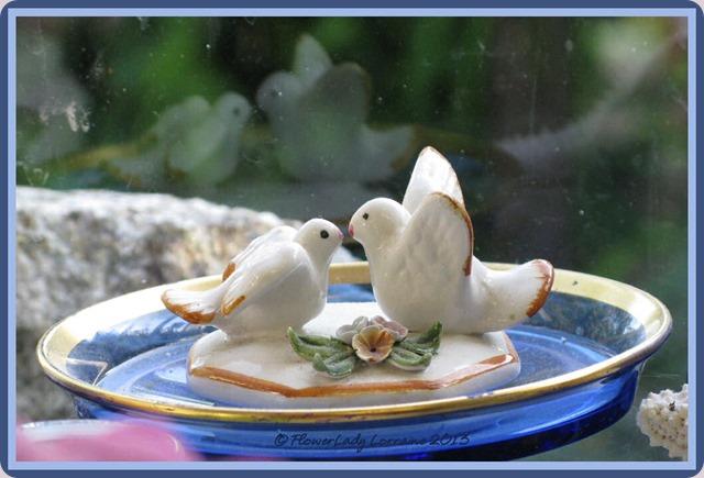 05-21-love-birds