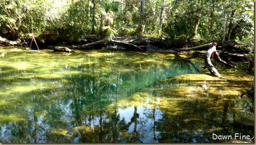 Chassahowitza River canoeing_071