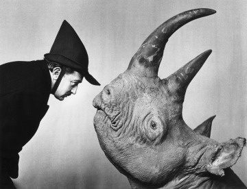 dali-and-rhinoceros