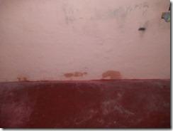 parede com mofo (4)