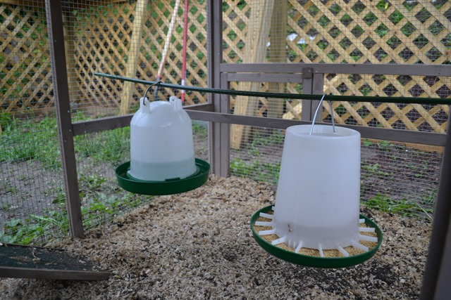 Chicken Coop Waterer and Feeder