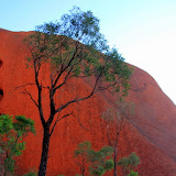 Looking Up At Uluru - Yulara, Australia